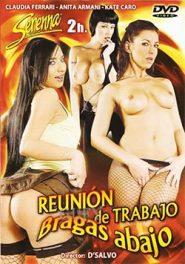 Reunion De Trabajo Bragas Abajo