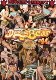 Dancing Bear 24 Ingles