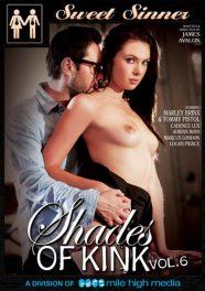 Shades Of Kink Vol. 6