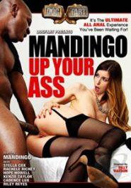 Mandingo Up Your Ass [DogFart]